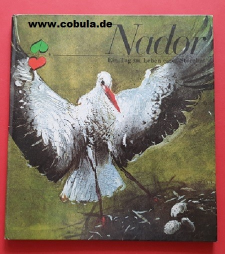 Nador Ein Tag im Leben eines Storches (ab 8 Jahre)
