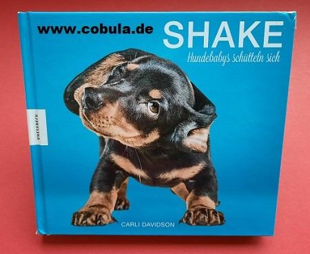 Shake Hundebabys schütteln sich