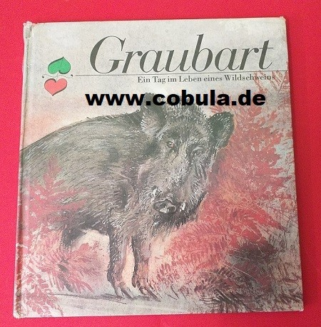 Graubart Ein Tag im Leben eines Wildschweins