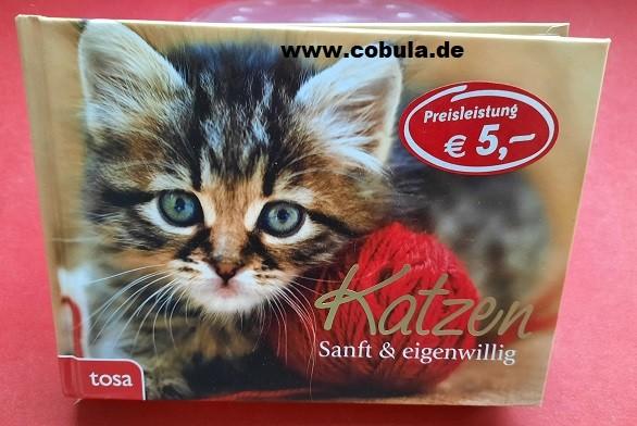 Katzen sanft & eigenwillig