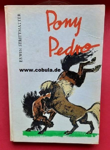 Pony Pedro (ab 13 Jahre)