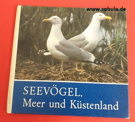 Seevögel, Meer und Küstenland
